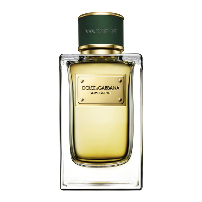 Dolce&Gabbana Velvet Vetiver EDP unisex parfum-without package-50ml